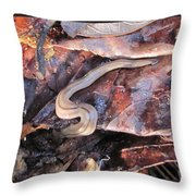 Land Planarium Throw Pillow