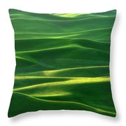 Land Waves Throw Pillow