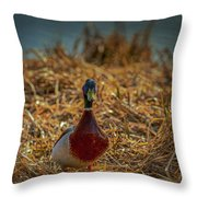 Landed Duck #g2 Throw Pillow