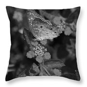 Landed Throw Pillow