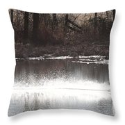 Landing Trumpeter Swans Throw Pillow