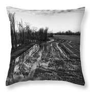 Landscape #1 Throw Pillow