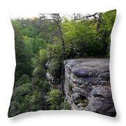 Landscape And Trees Throw Pillow