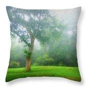 Landscape Beauty Throw Pillow
