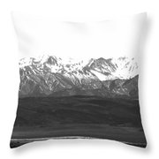 Landscape Contrast Throw Pillow