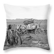 Landscape Galisteo Nm A10g Throw Pillow