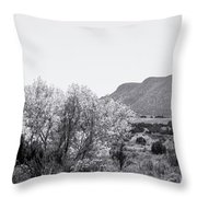 Landscape Galisteo Nm J10p Throw Pillow