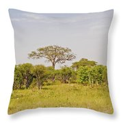 Landscape In Botswana Throw Pillow