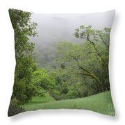 Landscape In Fog Throw Pillow