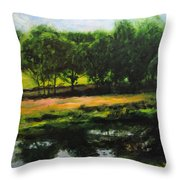 Landscape In North Wales Throw Pillow