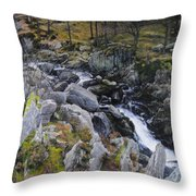 Landscape In Snowdonia Throw Pillow