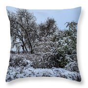 Landscape In The Snow Throw Pillow