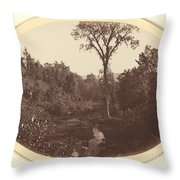 Landscape Near Williams College Throw Pillow