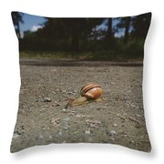 Landscape Of The Snail Throw Pillow