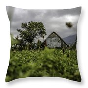 Landscape Photo In Nature Throw Pillow
