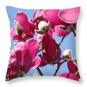 Landscape Pink Magnolia Flowers 46 Blue Sky Magnolia Tree Throw Pillow