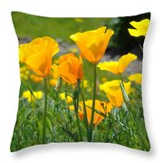 Landscape Poppy Flowers 5 Orange Poppies Hillside Meadow Art Throw Pillow