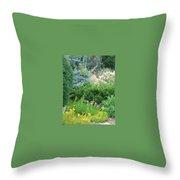 Landscape Sampler Throw Pillow