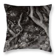 Landscape - The Forbidden Forest Throw Pillow