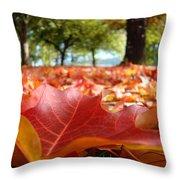 Landscape Trees Park Art Prints Autumn Fall Leaves Baslee Troutman Throw Pillow