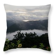Landscape Tropical Throw Pillow