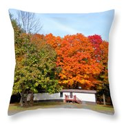 Landscape View Of Mobile Home 2 Throw Pillow