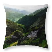 View Towards The Coast Throw Pillow