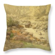 Landscape With Rocks In A River Throw Pillow