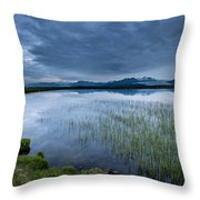 Landscape With Water Grass Throw Pillow