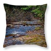Landscape4 Juin 2018 Throw Pillow