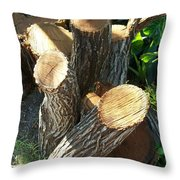 Landscaper Art Throw Pillow