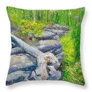 Lane Cove Burnt Stump Throw Pillow