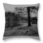 Langan Park In Black And White Throw Pillow