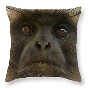 Langur Throw Pillow