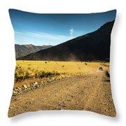 Lanin National Park Throw Pillow