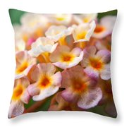 Lantana-1 Throw Pillow