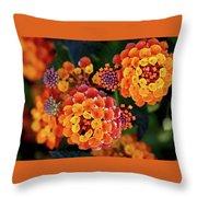 Lantana Blooms Throw Pillow