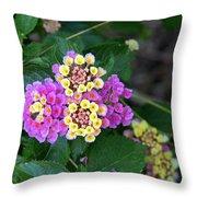 Lantanna's Blooms Throw Pillow