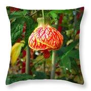 Lantern Flower Throw Pillow