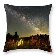 Lantern In The Lupines Throw Pillow