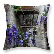 Lantern N Vines Throw Pillow