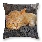 Lanzarote Ginger Throw Pillow