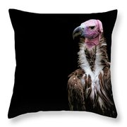 Lappet-faced Vulture - Africa - African Vulture - Nubian Vulture Throw Pillow