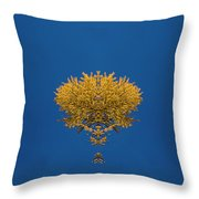 Larch Kaleidoscope 3 Throw Pillow