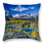 Larch Majesty Throw Pillow
