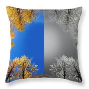 Larches Color To Black And White Reflection Throw Pillow