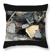 Large Blue Butterfly Throw Pillow