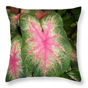 Large Coleus Plant Throw Pillow