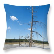 Large Dead Standing Tree In Hot Springs  Throw Pillow