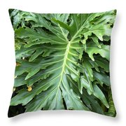 Large Fern Throw Pillow